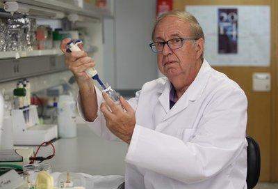 Josep Lluís Domingo
