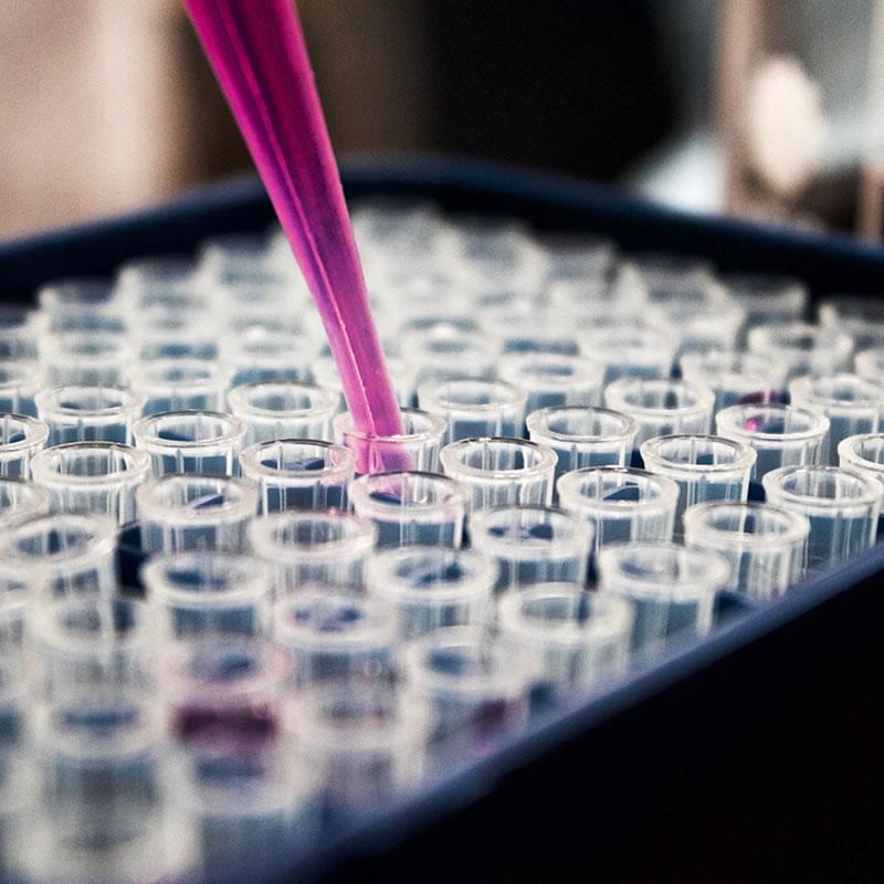Toxicología Experimental